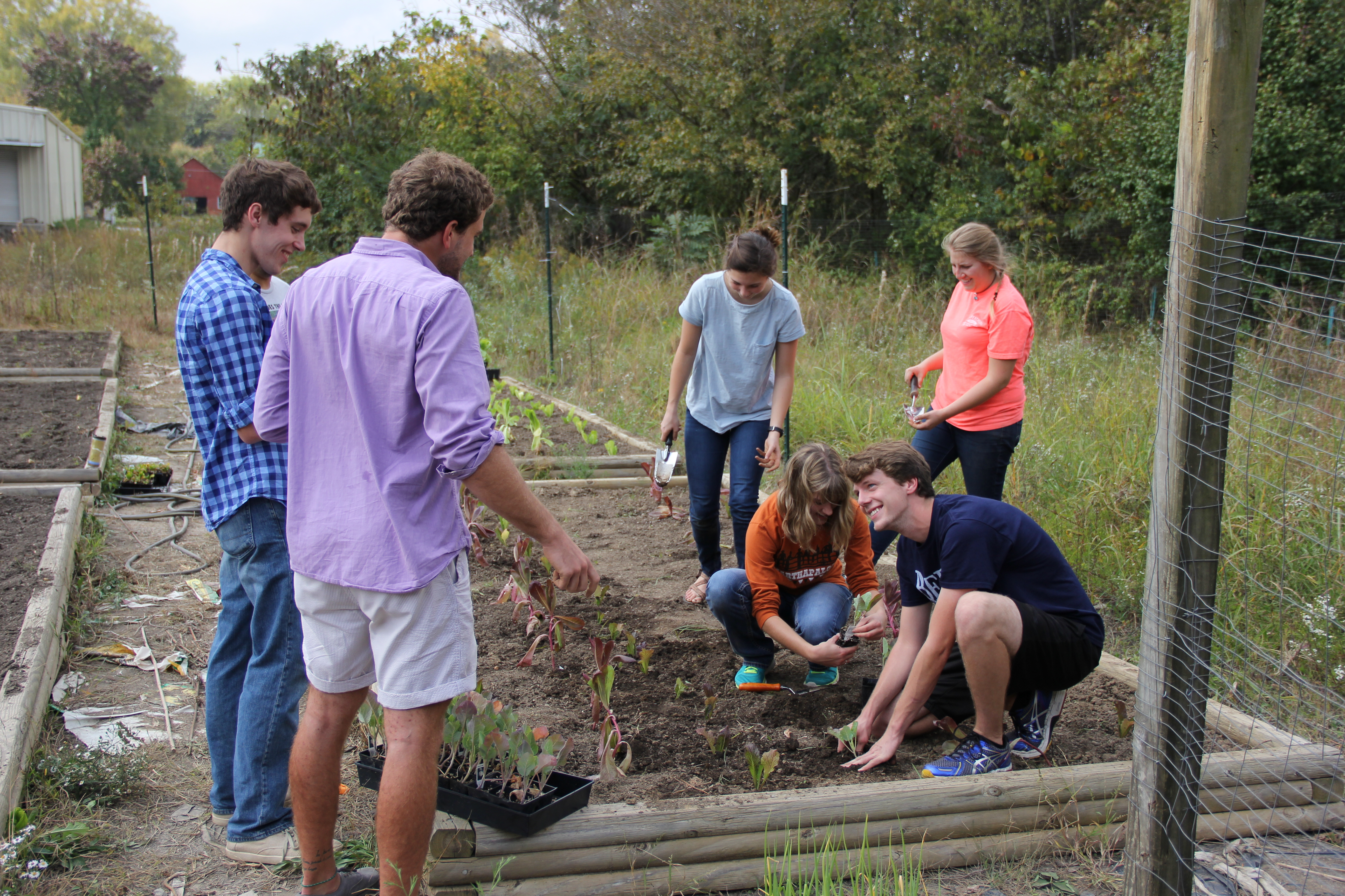 Anthropology and Environmental Studies students from Berry College working in the food pantry garden